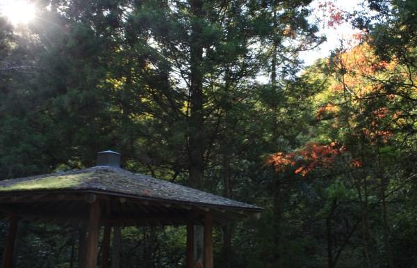 鈍川渓谷 道路脇の東屋