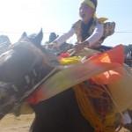 今治市菊間町 お供馬の走り込み(菊間祭)