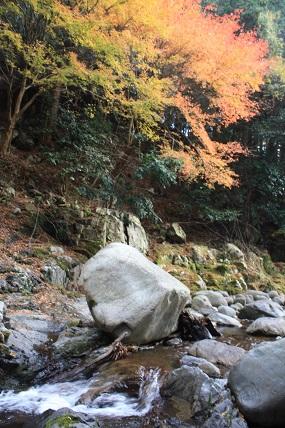 鈍川渓谷の紅葉