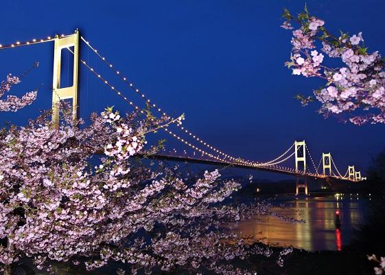 タイトル『糸山の春』