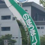 日本で一番小さい在来馬『野間馬』