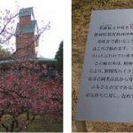 『春の足音がすぐそこに♪♪♪』