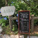 島しょ部の魅力を発信(カフェ遠見茶屋)